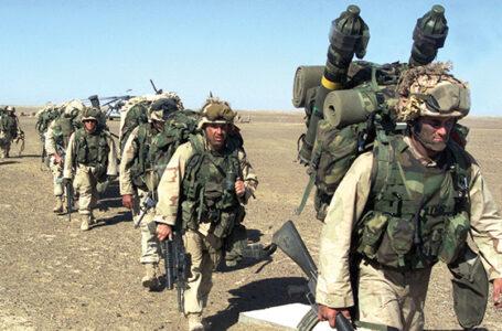 Psy afgańskiej wojny